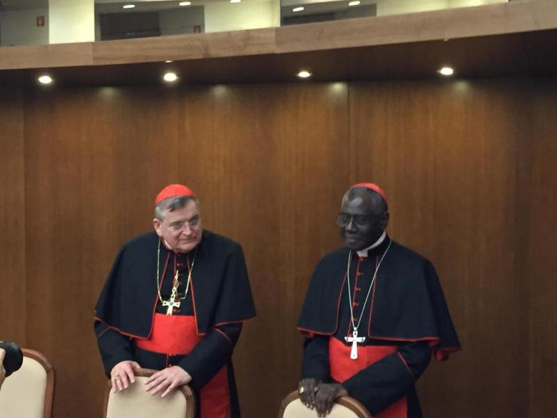cardinal Burke, cardinal Sarah